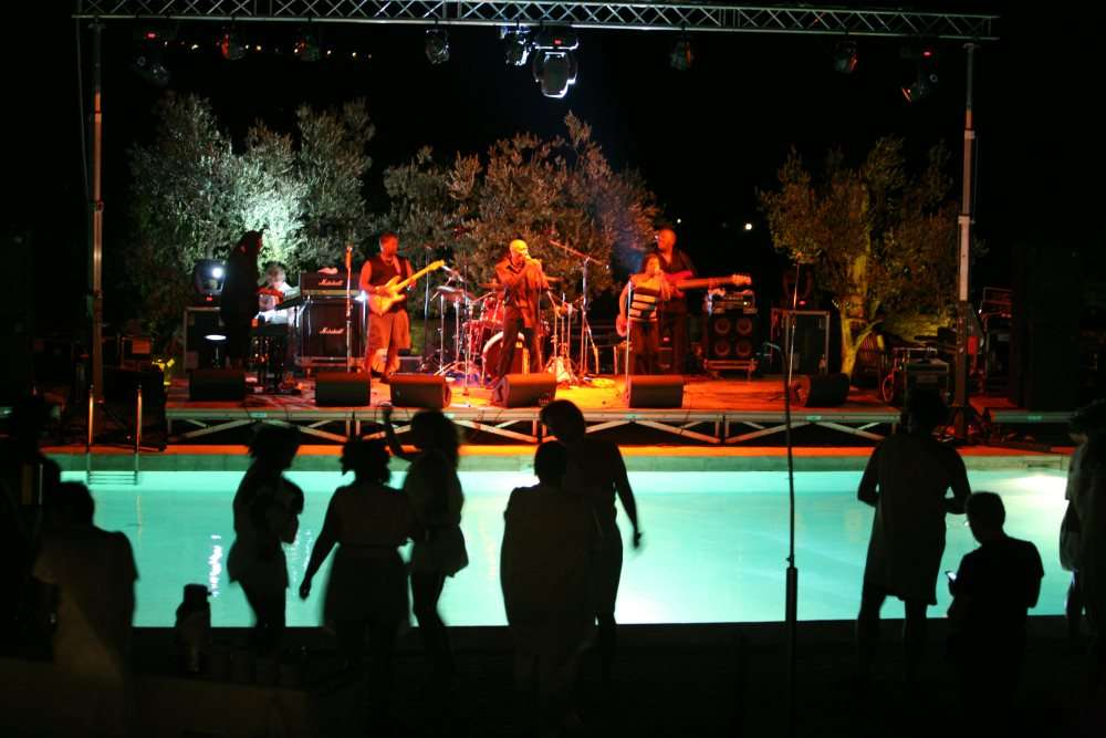 private pool party concert theme party toga party